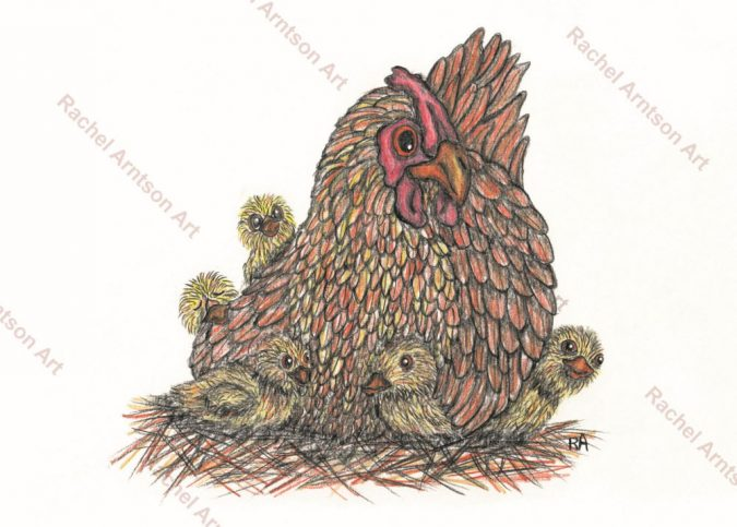 Are you a Mother Hen?